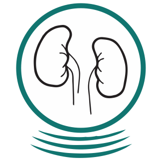 US-Icon-Kidneys